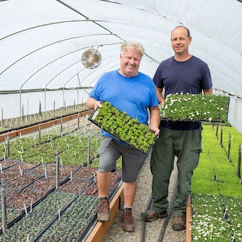 Mark Leichty, left, and Michael Hicks hold plants in a retrofitted green house at Little Prince of Oregon nursery, Aurora, Oregon.
